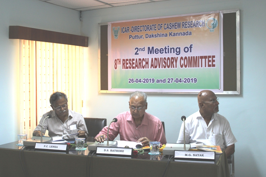 Research Advisory Committee Meeting