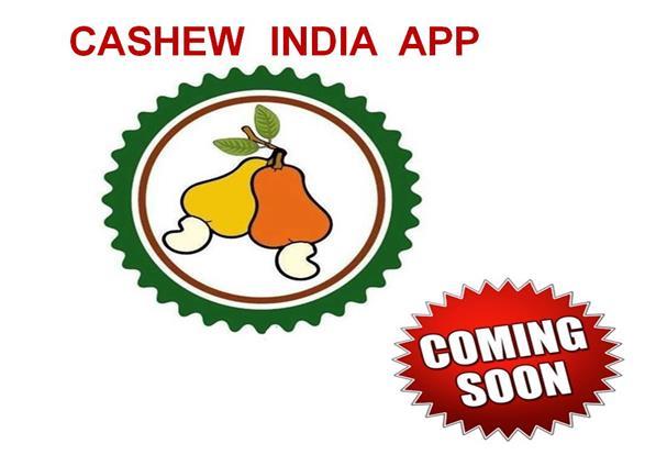 Cashew Varieties |